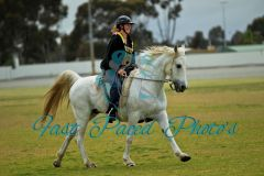 Kym Crook on Orchid Park Silver Phoenix doing BC Workout.jpg