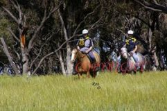 L to r. Marcel Fortsch on Mirriyindi Chaska & Cassie Mulcahy on Noran Country-Affair.jpg